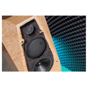 Ничего кроме реализма: Avalon Acoustics Precision Monitor 2