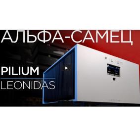 Альфа-Самец: интегрированный усилитель Pilium Leonidas