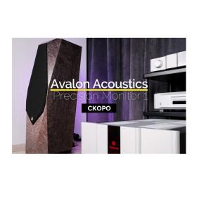 Впервые в России — Видео Avalon Acoustics PM1